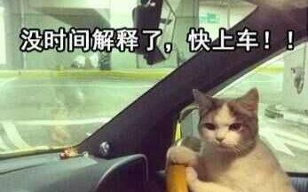 """""""老司機""""""""開車""""究竟是個什么梗兒? 真相魔性高能!"""